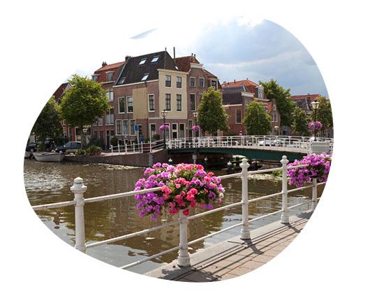 ZZP Zorgopdrachten in Leiden